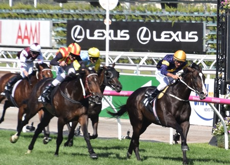 aus guineas_finish 2