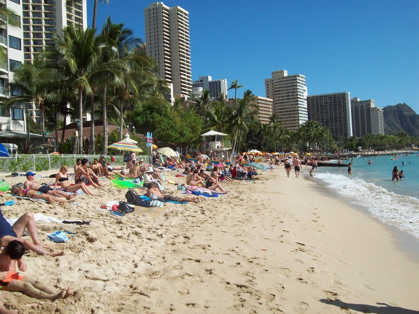 Hawaii Day 3 - 114_1129.JPG
