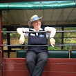 Puffing Billy Gray Line Tour | Fit Travels
