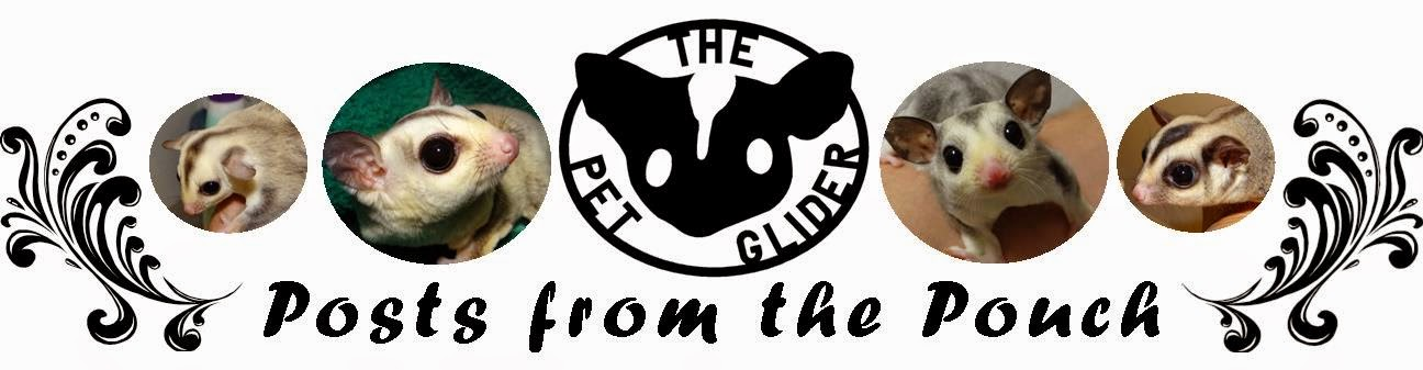 The Pet Glider Logo