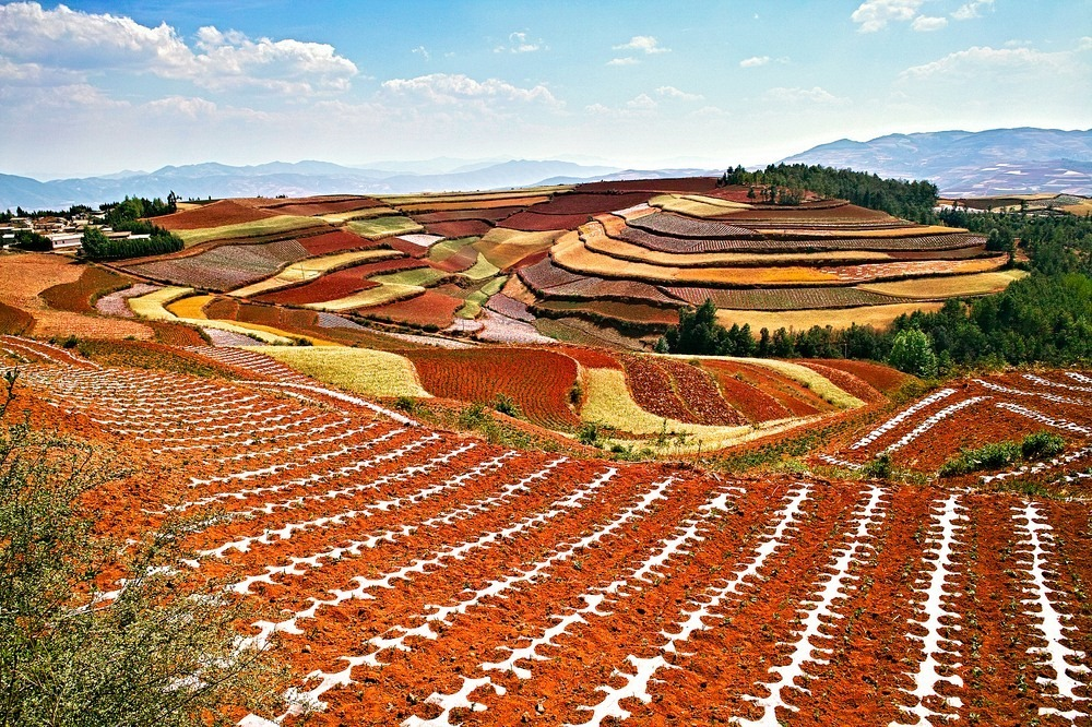red-earth-dongchuan-1