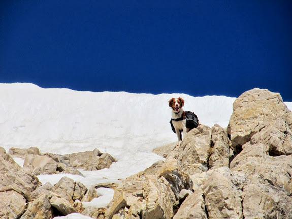 Torrey almost to the ridge