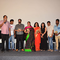 Green Card Movie Audio Launch (76).JPG