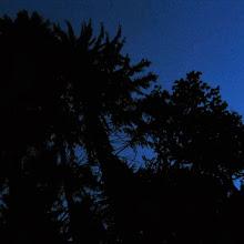 Taborjenje, Lahinja 2006 1.del - IMG_4611.JPG