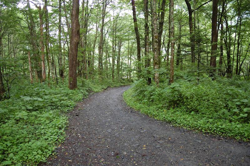 徳澤の前の道