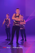 Han Balk Voorster dansdag 2015 middag-2181.jpg