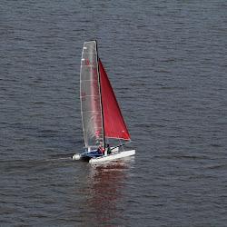 Dauphin Island Race 2013 021