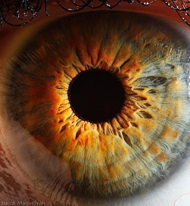 human eyes 1 (11)