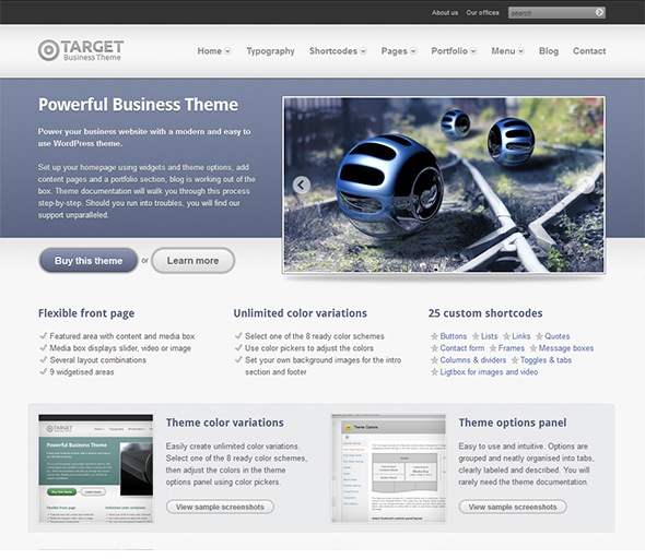 Target WordPress Theme for Business