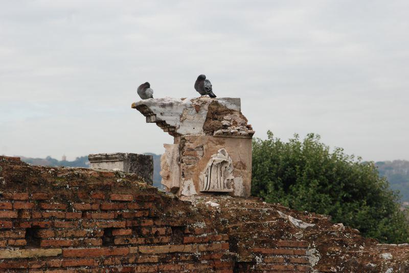 rome - 158.jpg