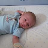 Meet Marshall! - IMG_0410.JPG