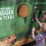 Houston Zoo - 116_8493.JPG