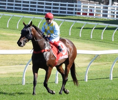 race 8_oakleigh plate_booker 2