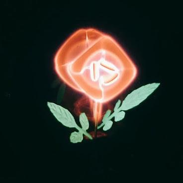 Lighting Set With I Love You Light Bulb 送比致愛,表達愛意的禮物燈組