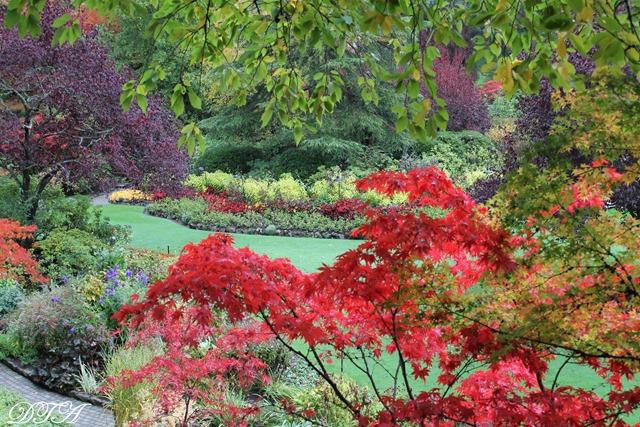 Butchart Gardens Sooke 168