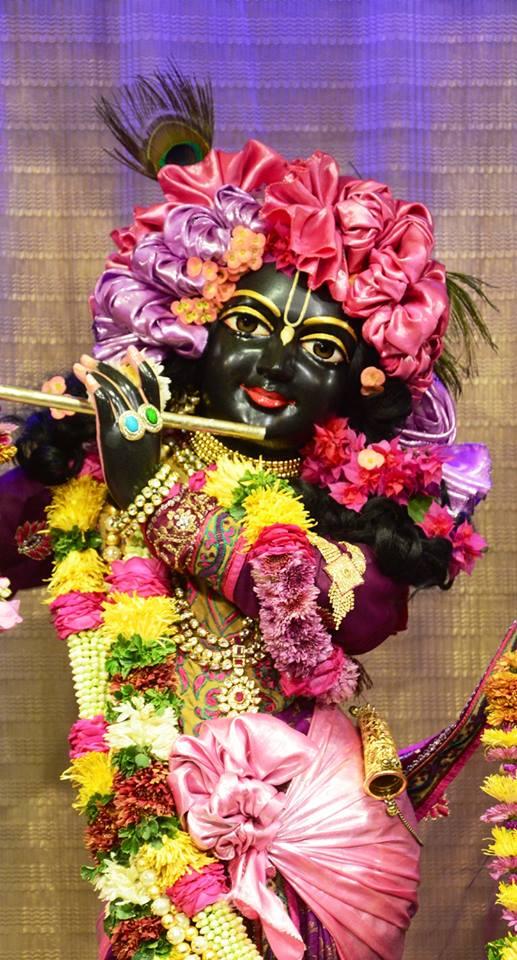 ISKCON GEV Deity Darshan 02 jan 2017 (9)