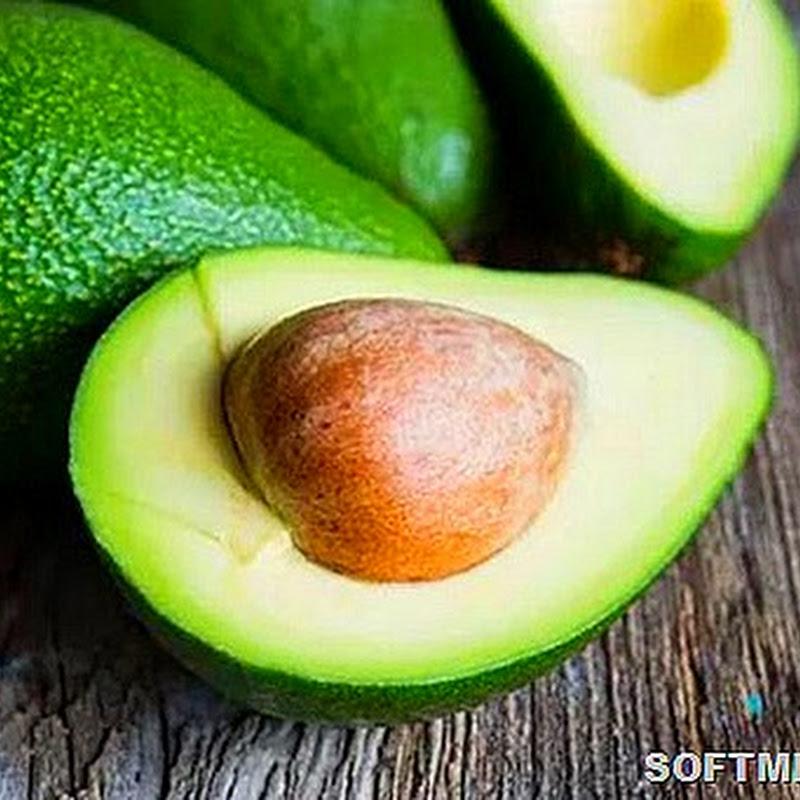 Измененные генетиками овощи и фрукты