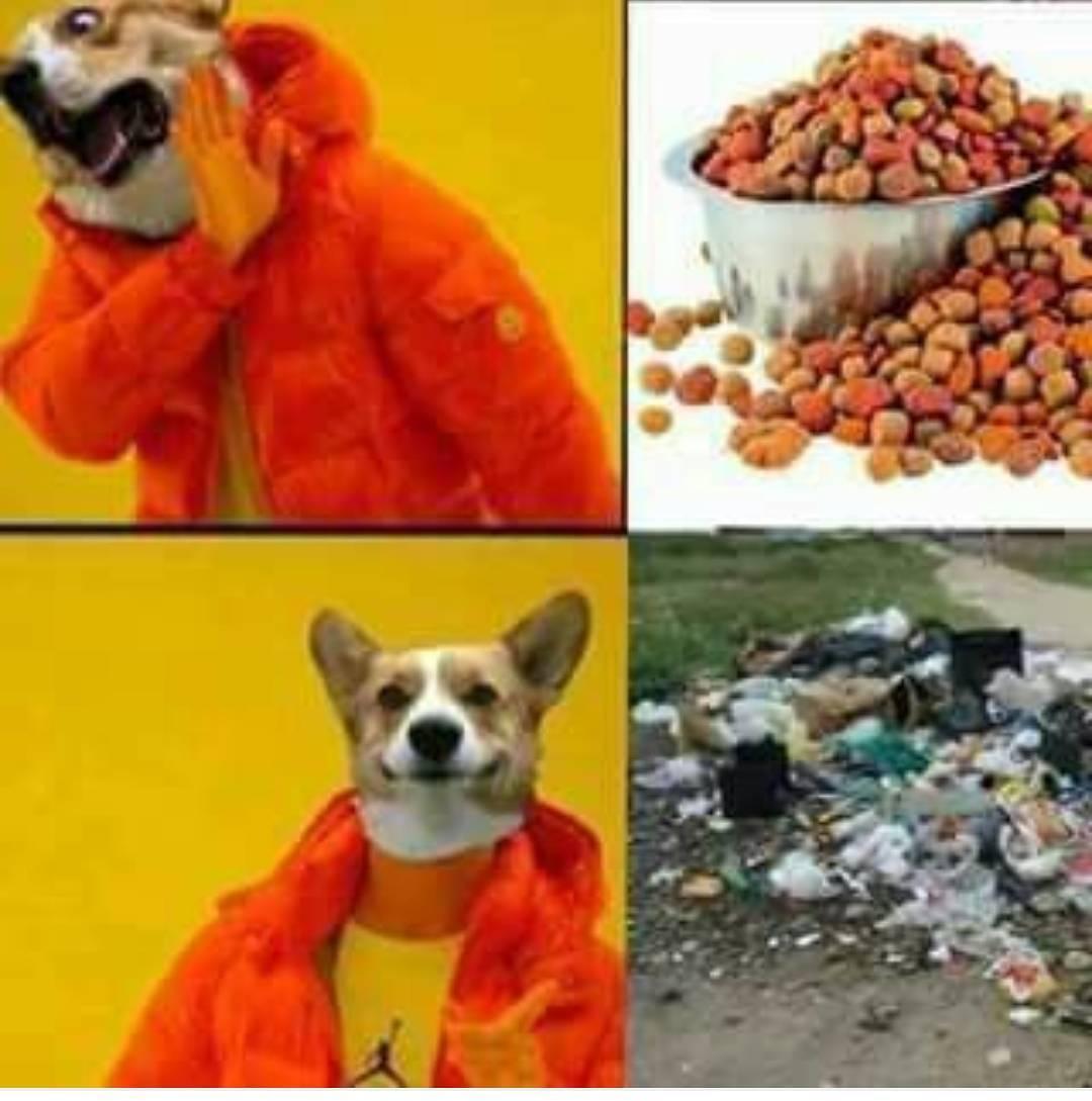imagenes-de-memes-para-whatsapp14
