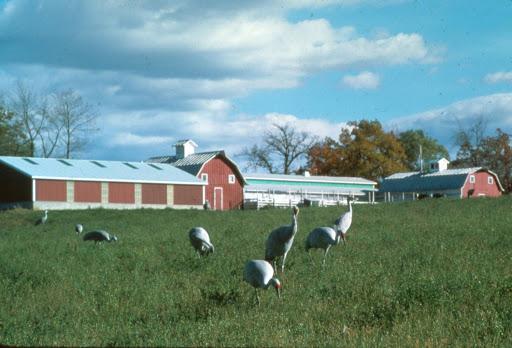 Original International Crane Foundation campus