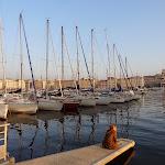 Marsiglia 6WWF 107.JPG