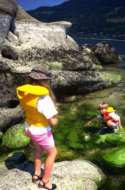 Exploring all the life forms in tide pools provides great fun for people of all ages! / Credit: Jon Brunk