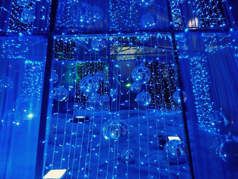 Chine.Shanghai et Suzhou - P1050642.JPG
