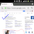 Search a particular Website only on Google?