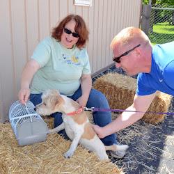 Intro to Barn Hunt Seminar 6-6-15