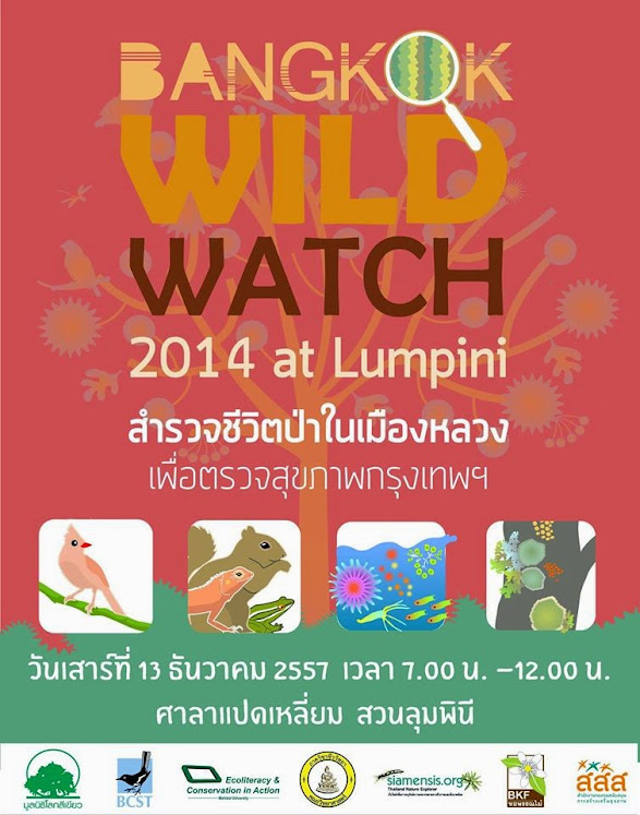 Bangkok Wild Watch