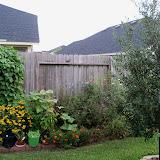 Gardening 2010, Part Three - 101_5151.JPG