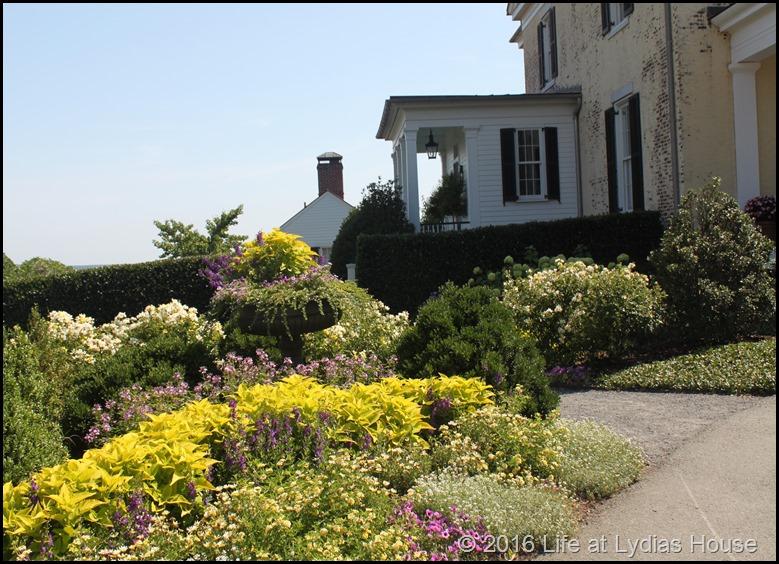 driveway border garden