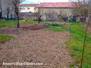 French Village Diaries #HowDoesYourGardenGrow potager weeding seeds