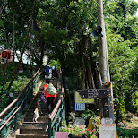 steep stairways to Elephant mountain in Taipei, T'ai-pei county, Taiwan