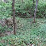 """Bois de la Barre : la """"découverte"""", travail de déblaiement pour atteindre les blocs de meulière"""