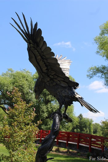 Eagle spirit two