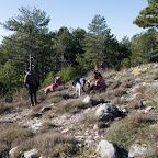 Šumski 14.jpg