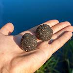 20140715_Fishing_Shpaniv_013.jpg