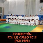 EXHIBICIÓN FIN DE CURSO 2012 (PEPE)