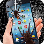 Spider in phone for Prank