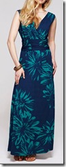 HotSquash V neck maxi dress