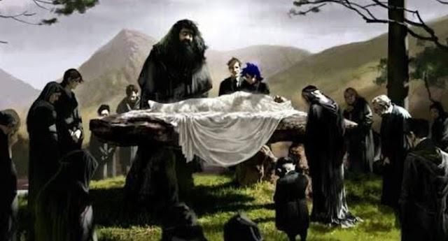 Evanna Lynch a Luna Lovegood de Harry Potter ofereceu seu salário para que fosse filmado a cena do Funeral de Dumbledore