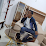 El Amine Abdelouahed's profile photo