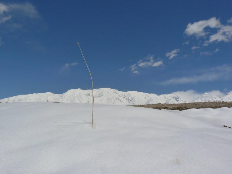 XINJIANG. Karakoram Highway, lune des plus haute route au monde, en passant a 4400 m - P1280504.JPG