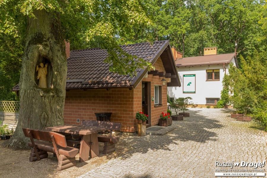 Arboretum w Wirtach
