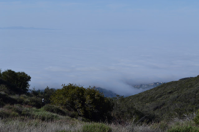 marine layer from foothills to islands