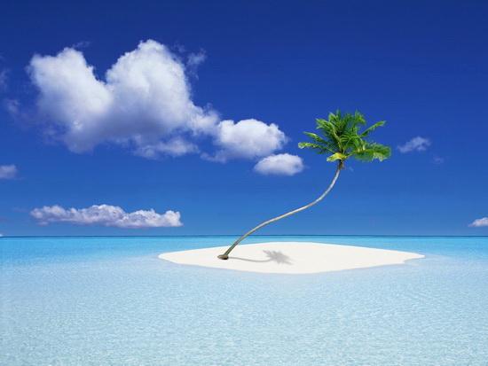 Pohon kelapa di pulau terpencil, Maladewa