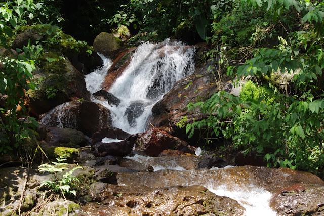 Cascade entre Cachipay et San Rafael, à l'est de Santa María en Boyacá, 890 m (Boyacá, Colombie), 3 novembre 2015. Photo : J.-M. Gayman