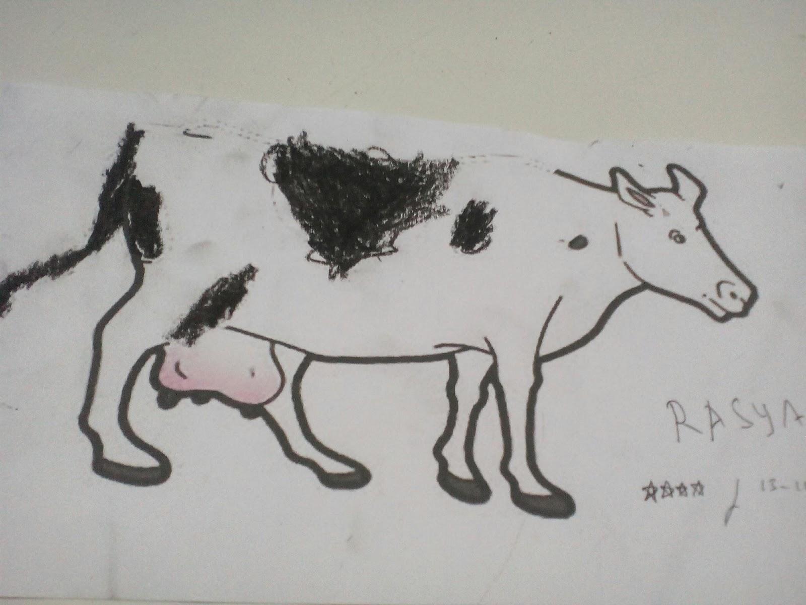 Memberi warna hitam pada gambar sapi Tema binatang Sub tema macam2 binatang Fokus binatang berkaki 4 Kamis 13 Oktober 2016