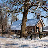 Winter - Winter-026.jpg