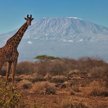 East Africa photos